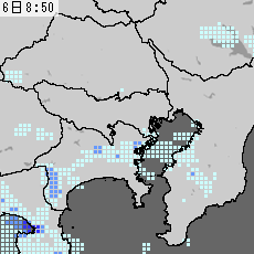 100306_G